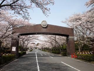 公営飯盛霊園(四條畷市)