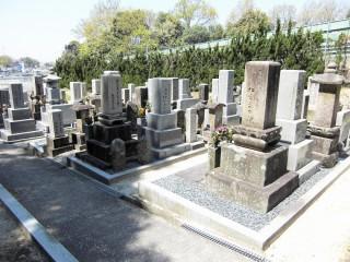 杉共同墓地(枚方市)
