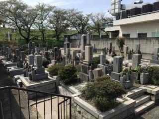 庄所墓地(高槻市)