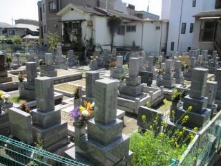 穂積新家墓地の風景