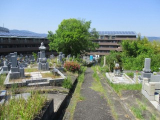 道祖本墓地(茨木市)