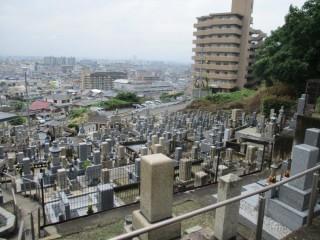 大県共同墓地(柏原市)
