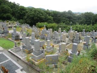 国分東条町墓地(柏原市)