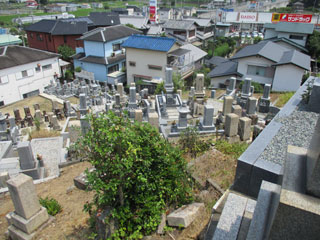 和泉市弥生町墓地(和泉市弥生町)