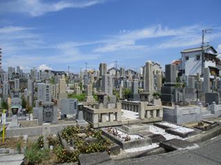和泉市_美野墓地