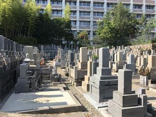 園満寺墓地風景